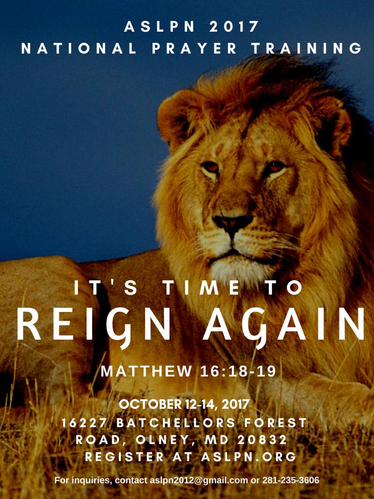 Reign Again (5)